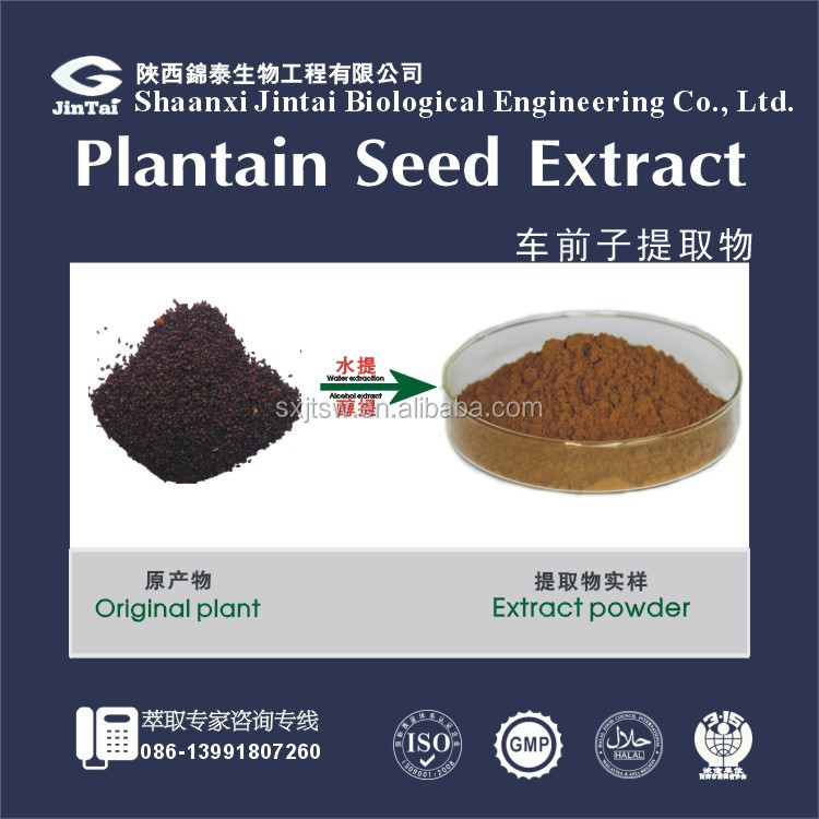 20:1 by TLC anti-cancer Plantain Seed Extract Plantago asiatica L.