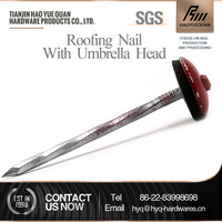 rubber washer umbrella head roofing nails with smooth or barbed shanks