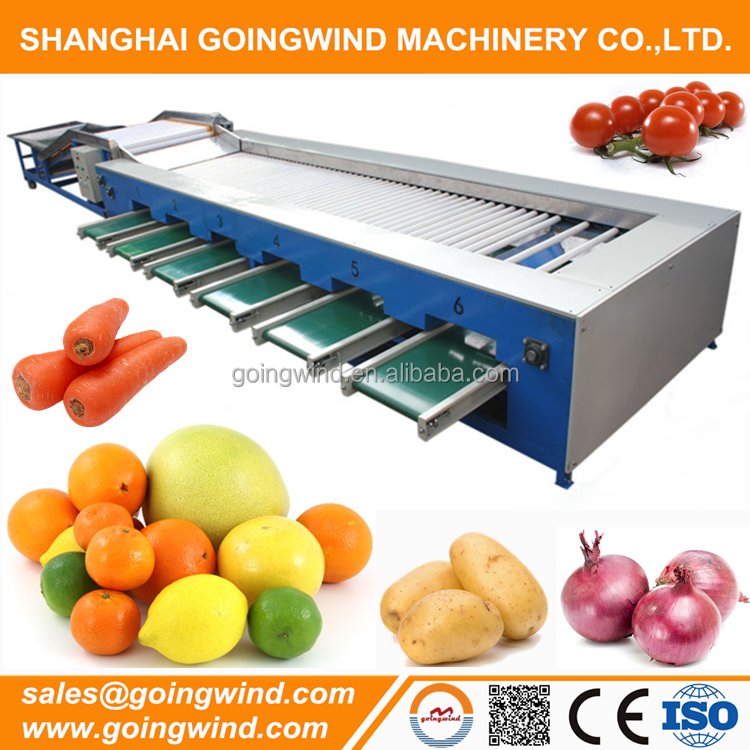 Automatic fruits and vegetables size sorting machine fruit sorter diameter grading equipment good price for sale