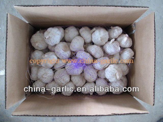 "Chinese fresh garlic producers 2013"", with low price"