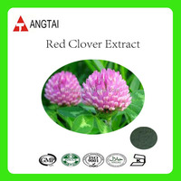 China Red Clover Extract / Red Clover P.E. with 40% Total Isoflavones