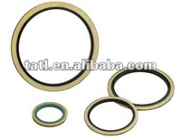 Mechanical seal gasket for you