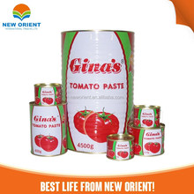 oem brand canned tin packing tomato fresh ketchup tomato paste sauce