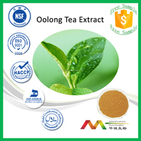 NSF-cGMP Natural Hot Sale Weight Loss Camellia Sinensis/Oolong Tea Extract