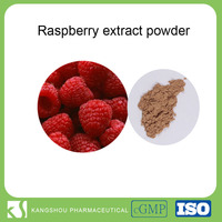 High quality natural raspberry fruit extract raspberry ketone raspberry extract powder