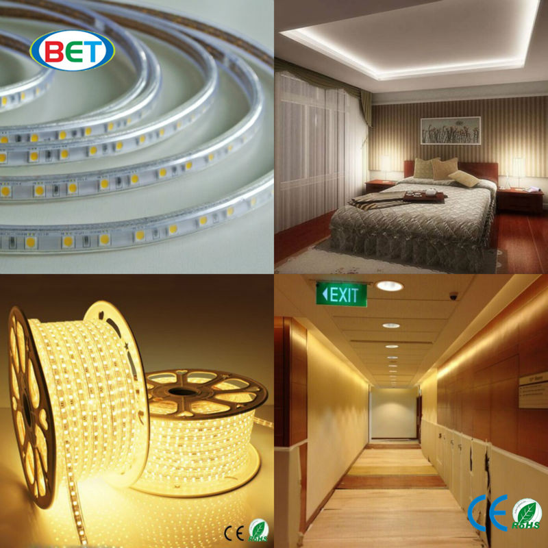 High Voltage Newest led tapes 110v 220v ip67 5060 smd strip led led ropelight