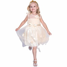 Girls Dresses Summer Tutu Princess Baby Flower Costume Lace Tulle Party Dress For Kids