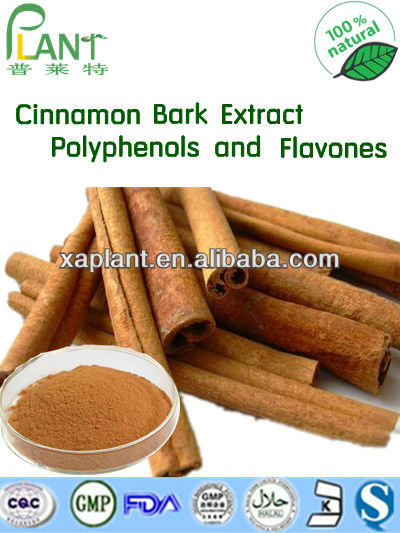 High quality Cinnamon bark extract 10% cinnamon Flavones