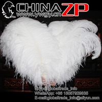 NO.1 Supplier Wholesale AAA Quality 70-75cm Large White Ostrich Feathers Carnival Headdresses