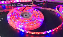 16.4ft SMD5050 Waterproof Full Spectrum Rope lights Red Blue 4:1 for Aquarium Greenhouse LED Grow Plant Light Strip