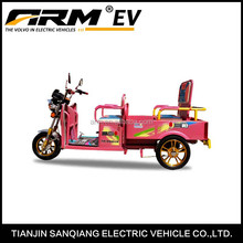 Hot Selling High Performance 500W Electric 3 Wheel Motorcycle