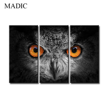 Home Goods Wall Art 3 Panel Animal Canvas Prints the Owl Eyes Black and White Canvas Oil Paintings Picture