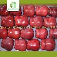 Hot selling summer red apple market prices fruits