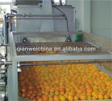 concentrated mango paste/mango pulp /mango sauce production line