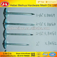 China factory umbrella head roofing nails with rubber washer/hot dip galvanized roofing nails for sale
