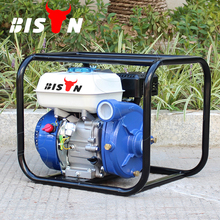 BISON(CHINA) BS15I Cast-Iron 1.5 Inch Mini Portable High Pressure Water Jet Pump For Irrigation
