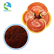 Top Quality Organic Reishi Mushroom Spore Powder