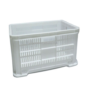 Direct factory plastic food storage box/ vegetable shipping containers