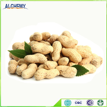 Free sample peanut suppliers from india