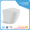 /product-detail/ceramic-p-s-tarp-wall-hung-toilet-high-quality-design-wc-toilet-60576526900.html