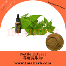 Best Sell Nature nettle extract