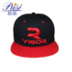 2018 custom wholesale 6 panel 3d embroidery hip hop snapback caps hats with your own logo
