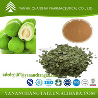 Herbal extract High quality natural Guava Leaf Extract Beta Triterpenoids