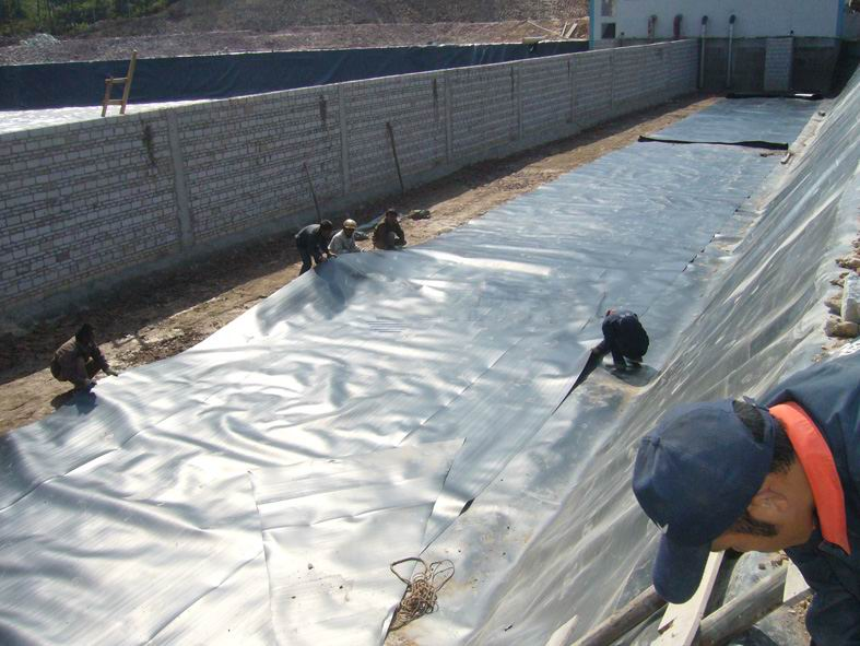 1.2mm thickness HDPE geomembrane liner for fish farming price