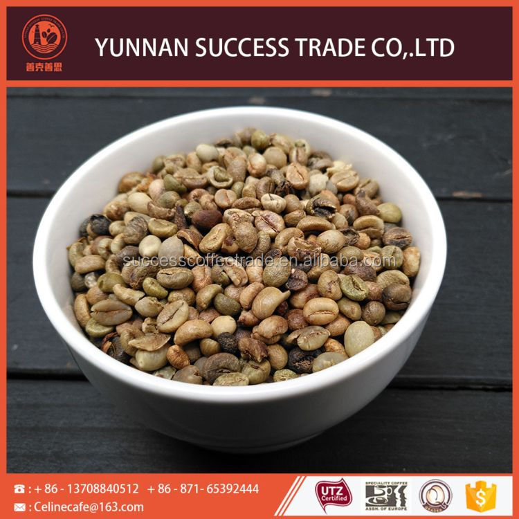 China manufacture top quality coffee bean plants for sale