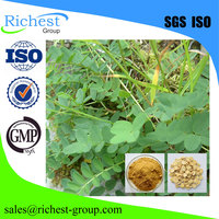 factory supply high purity Antioxidant 10% Astragalus Root Extract Powder
