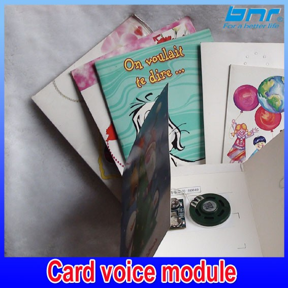 custom voice Music Chips Sound Modules Voice Recorder For Greeting Cards And Toys