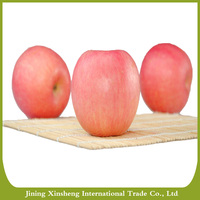 Delicious mature red fuji apple