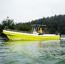 26Ft Motor Fiberglass Fishing Boat for Sale