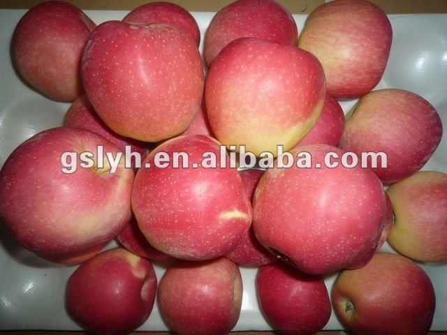 fresh gala apple(hot)