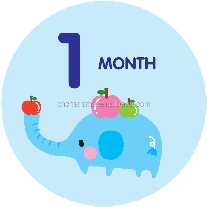 Happy Animal Sticker Baby's First Year Growth and Holidays. Month Sticker for Boy or Girl, Baby Monthly Stickers