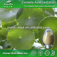 Gotu Kola Extract Asiatic Acid, Gotu Kola Extract, Asiatic Acid with Best Quality