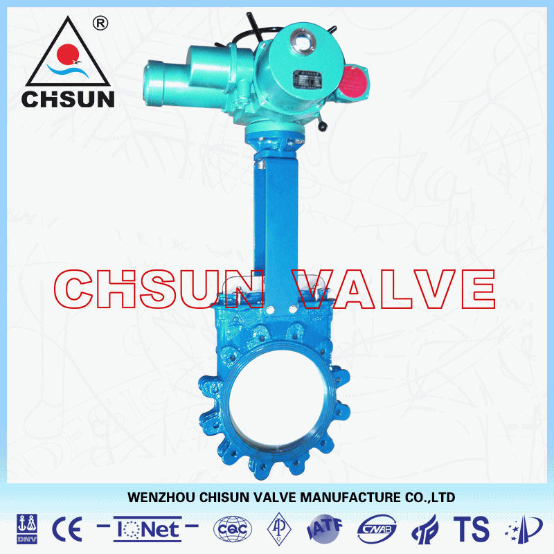Davis Paper Making Electric Acuated Lugged Knife Gate Valve