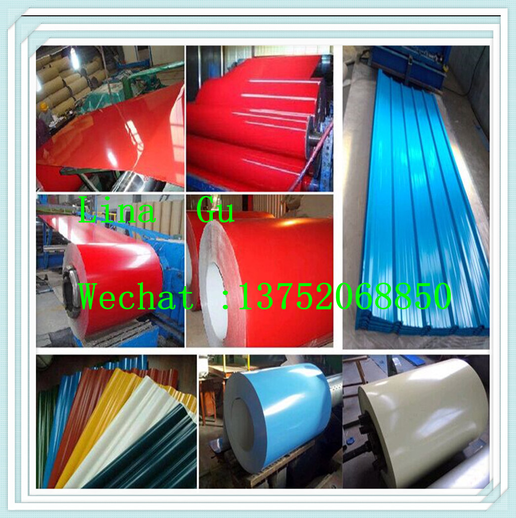 Best price of 103 galvanized steel coil buyer 113 0 21 60-31-8-34-29-27-60-46-100-28-40-21 steel coil for wholesales