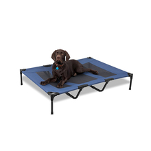 Amazon Metal Frame Cheap Dog Bed