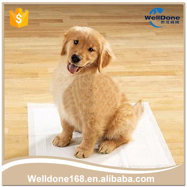 High Absorbency Soft Puppy Pet Training Pad For Sale