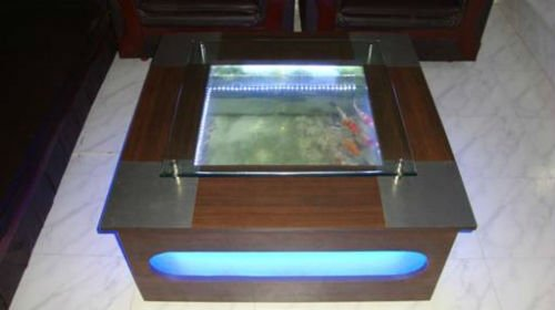 india coffee table fish tank, india coffee table fish tank