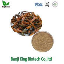 Increase immune system cordyceps extract cs-4 cordyceps bhutan