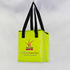 High Credibility Picnic Plastic Cooler Bag
