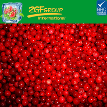 Bulk Packing IQF Frozen Lingonberry Fruits