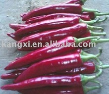 Supercritical Co2 Paprika Extract-Paprika Oleoresin (Red Chilli Color)-Pigment