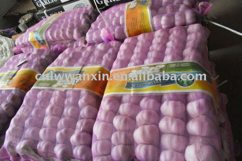 china garlic exported to north affrica