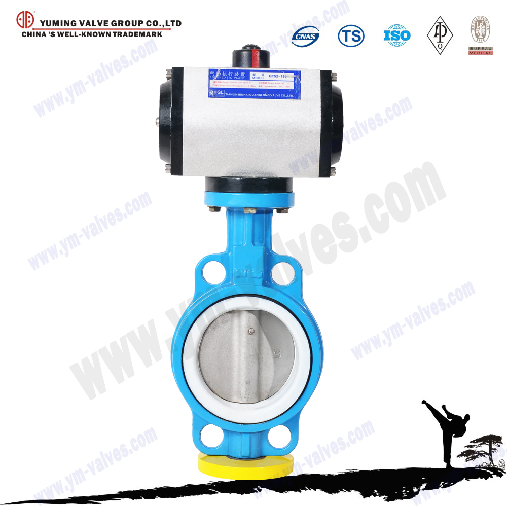 Worm gear wafer type electric operated butterfly valve