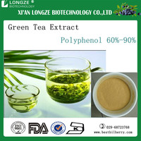 Hot sale product green tea extract with 60%-90% polyphenol with best price