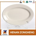 Stock hotel utensils white ceramic fish plate