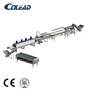Palm dates brush washing machine/cleaning machine from COLEAD/dates production line